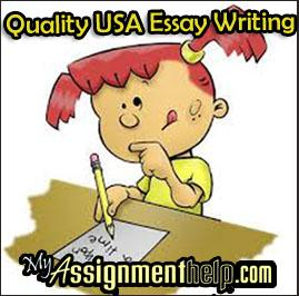 Systems Engineering essay writing cheap
