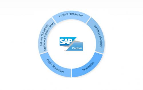 Implementation of sap in manufacturing